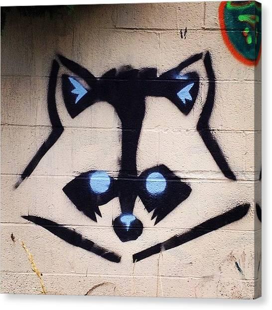Raccoons Canvas Print - #pdx #portland #mttabor #graffiti by Fiona Garriott