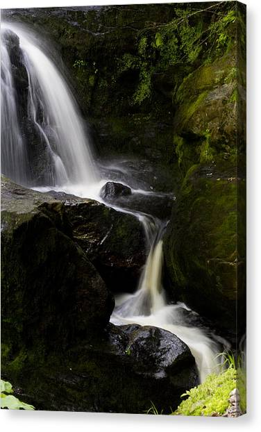 Peaceful Canvas Print