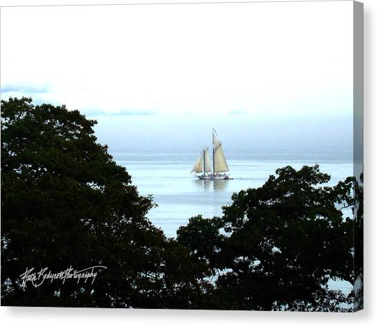 Penobscot Bay Sailing Canvas Print by Ruth Bodycott