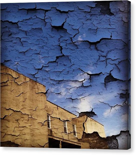 Foxes Canvas Print - #perspective #iphonography #iphonesia by Rachel Fox Burson