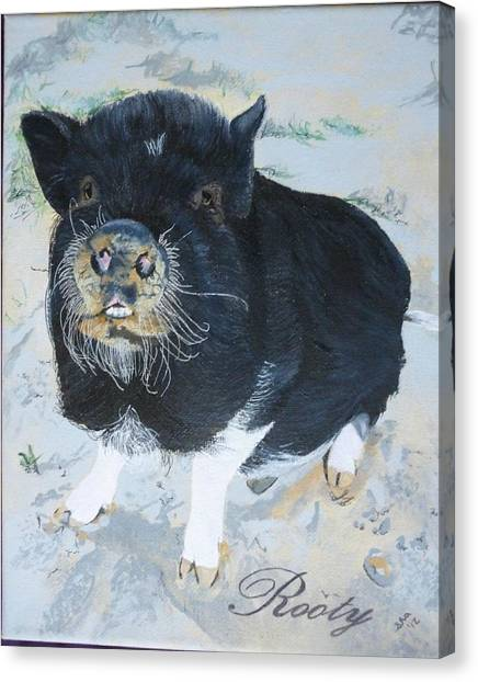 Pigatopia Canvas Print - Pet Portrait Memorial Black Pot Bellied Pig Made To Order 3 Inch X 4 Inch With Free Easel  by Shannon Ivins