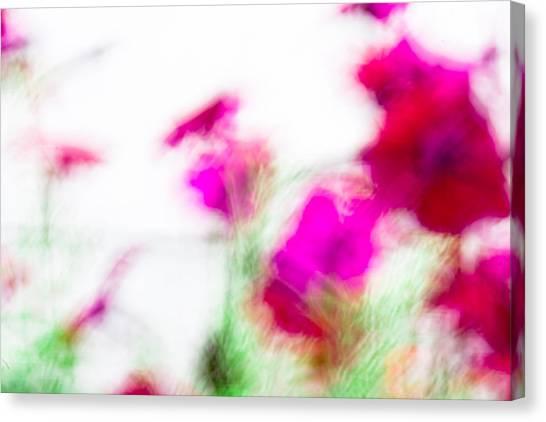 Petunias Canvas Print by Nancy Kennedy
