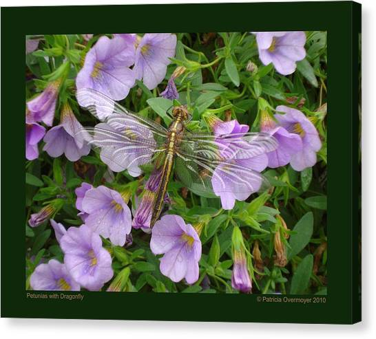 Petunias With Dragonfly Canvas Print