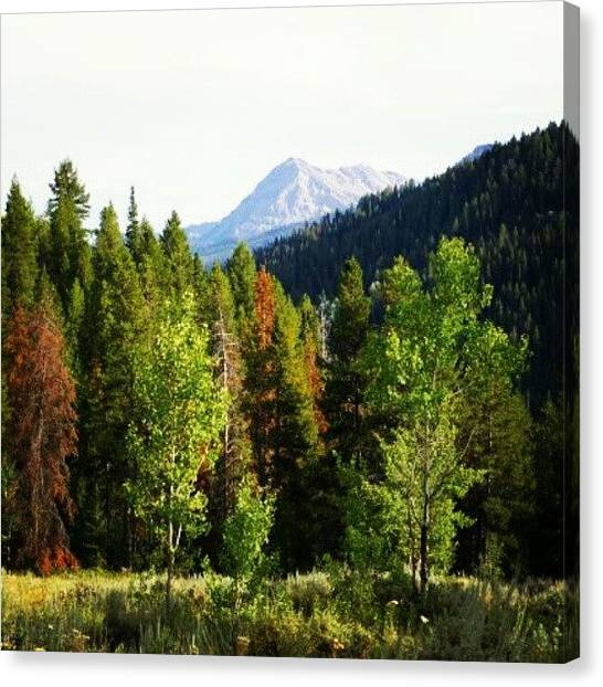 Wyoming Canvas Print - #photoadayapril - Somewhere I've Been by Jen Flint