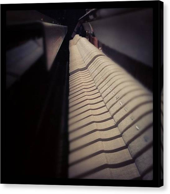 Hammers Canvas Print - Piano Hammers. #picoftheday by Davis M