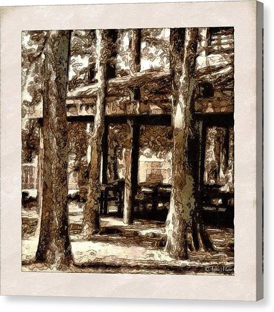 Iphone 4 Canvas Print - Picnic Grove - Painted & Block Printed by Photography By Boopero
