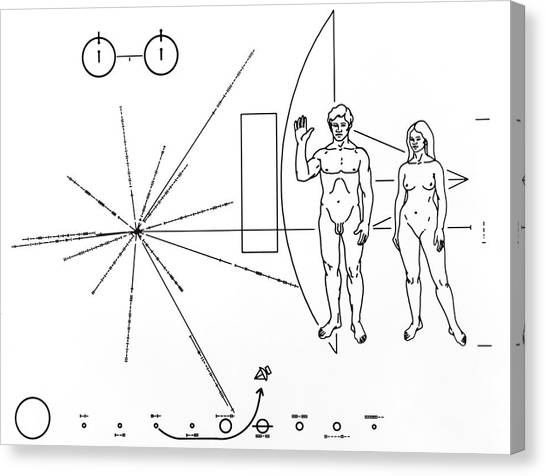 Pictorial Plaque On Pioneer 10 And 11 Photograph By Nasa