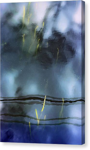 Picture Of Water Canvas Print by Marisa Matis