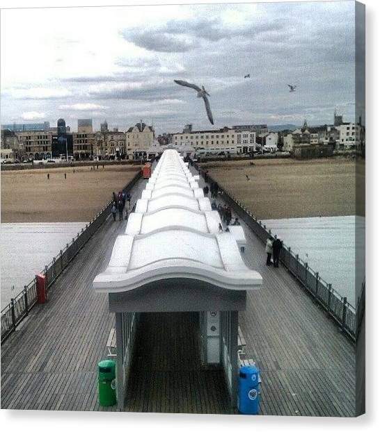 Seagulls Canvas Print - #pier #westonpier #wsm #abs #muscles by Kevin Zoller