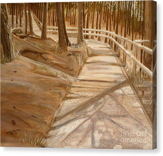 Pine Forest Walk Canvas Print