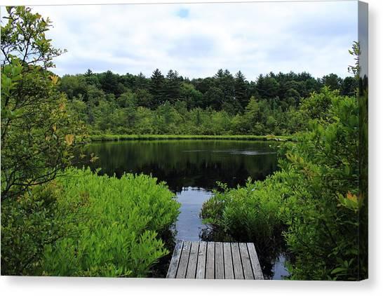 Pine Hole Pond Canvas Print