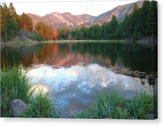 Pine Valley's Tranquility Canvas Print