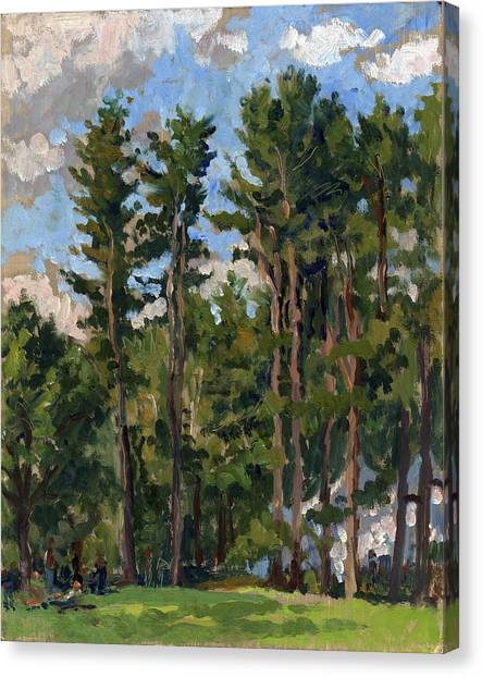 Pines At Tanglewood Canvas Print