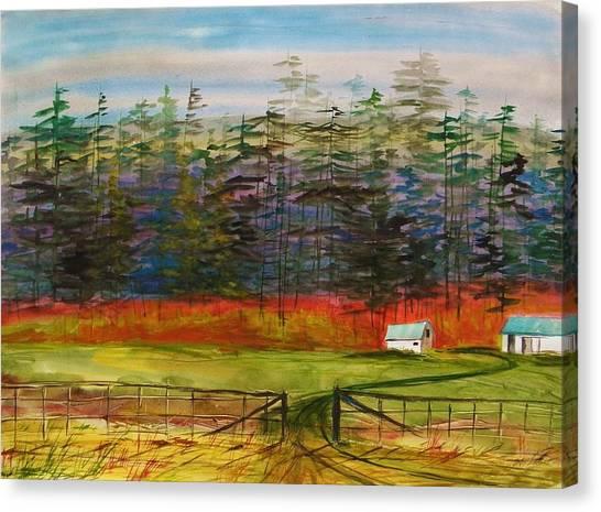 Pines Behind The Barns Canvas Print by John Williams