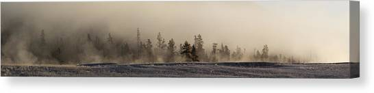 Yellowstone National Park Canvas Print - Pines In The Mist by Twenty Two North Photography
