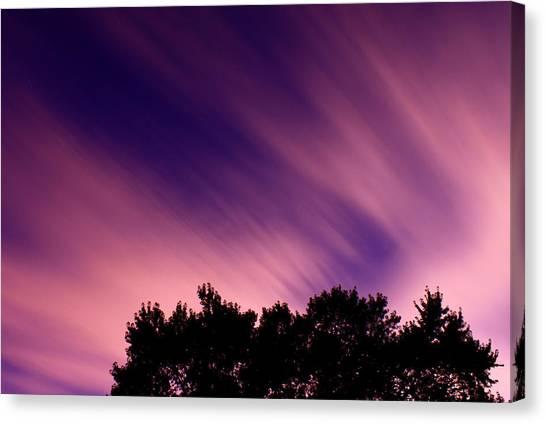 Treeline Canvas Print - Pink Clouds by Cale Best
