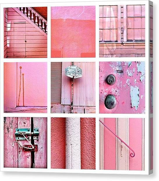 Color Canvas Print - Pink  by Julie Gebhardt