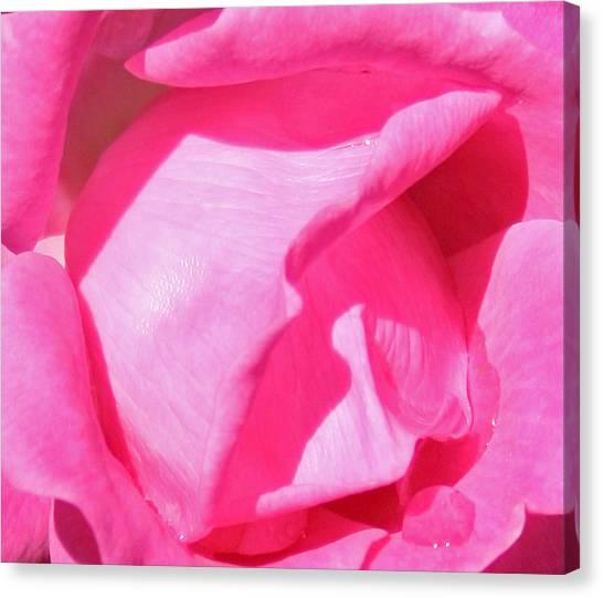 Pleasingly Pink Canvas Print