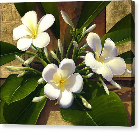 Plumeria Canvas Print by Anne Wertheim