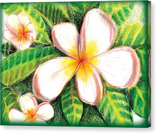 Plumeria With Foliage Canvas Print