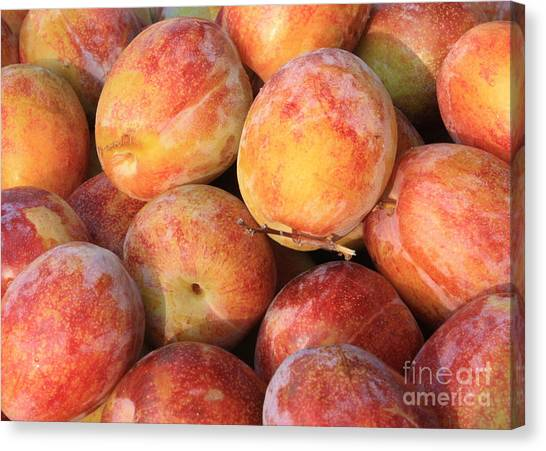 Grocery Store Canvas Print - Plums by Carol Groenen