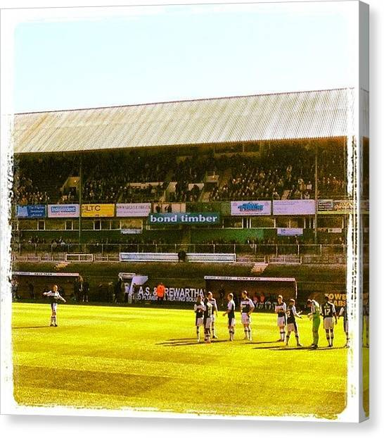 Stadiums Canvas Print - Plymouth Argyle by Paul Mcdonnell
