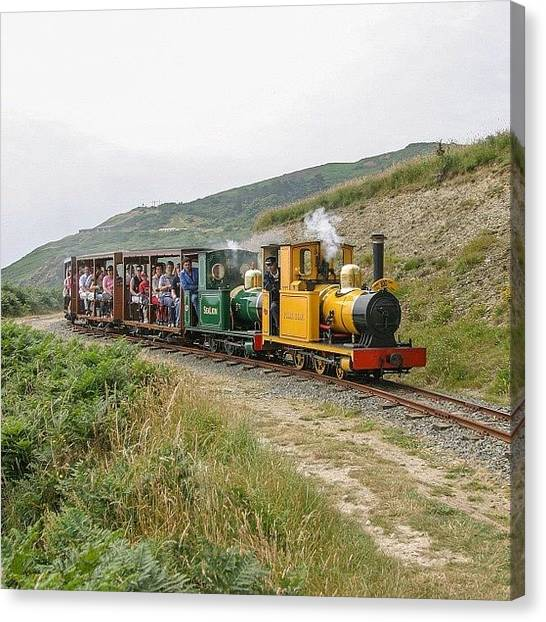 Locomotive Canvas Print - Polar Bear And Sea Lion On The Groudle by Dave Lee
