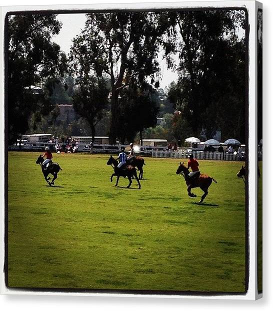 Horses Canvas Print - Polo At Will Rogers by Lana Rushing