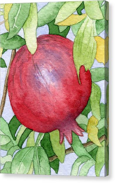 Pomegranate In Tree Canvas Print by Eunice Olson