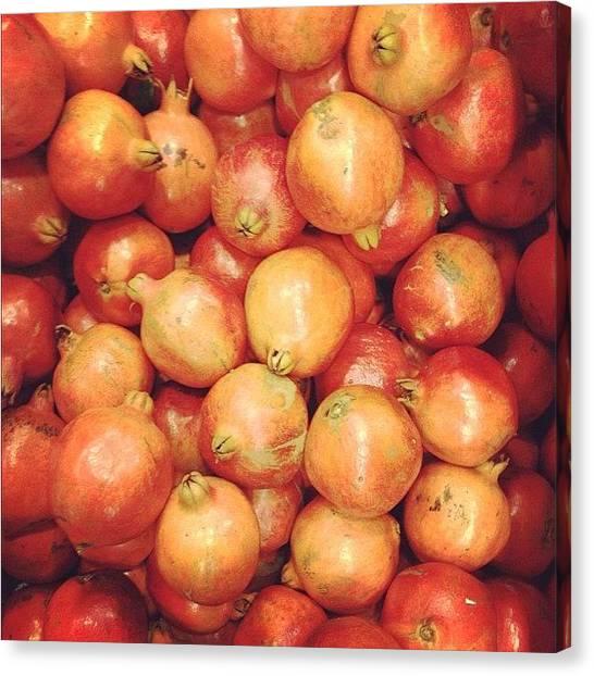 Medicine Canvas Print - Pomegranates by Shafik Ismail