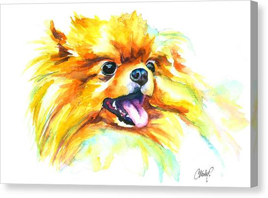 Pomeranian Fire Canvas Print