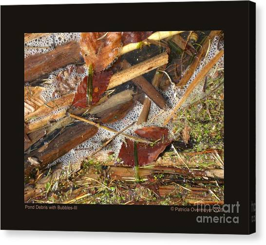 Pond Debris With Bubbles-iii Canvas Print
