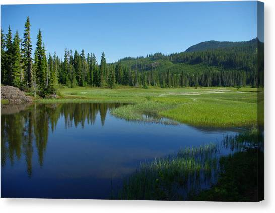 Pond Reflection Canvas Print