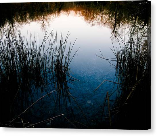 Pond Reflections Canvas Print by Susan Adams