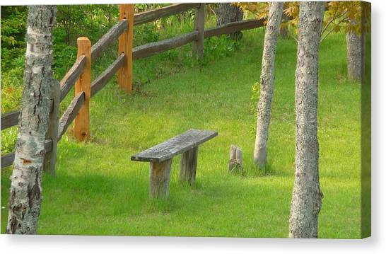 Pondering Bench Canvas Print by Michael Carrothers
