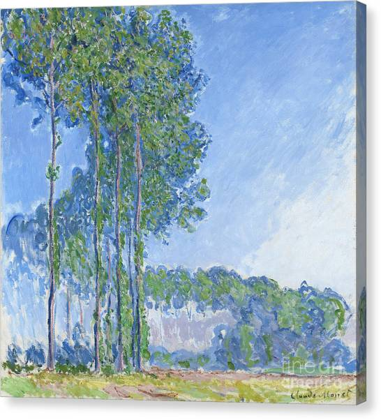 Impressionism Canvas Print - Poplars by Claude Monet