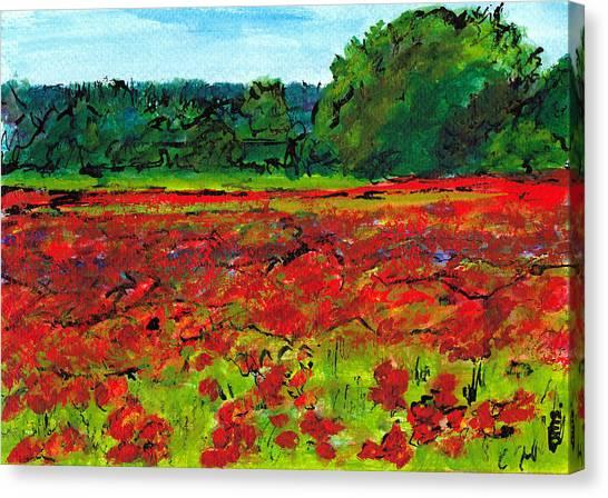 Poppy Fields Tuscany Canvas Print by Jackie Sherwood