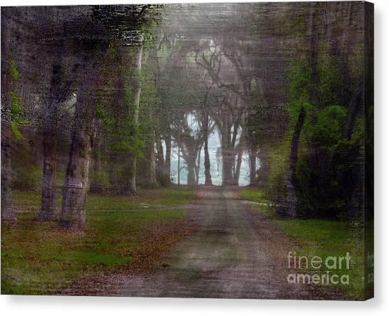 Prairie Road Canvas Print