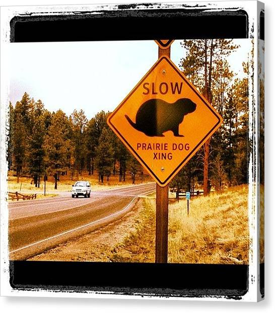 Street Signs Canvas Print - Prairie Roadsign by Isabel Poulin
