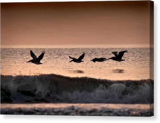 Predawn Formation Canvas Print