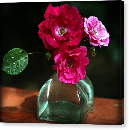 Pretty Red And Pink Flowers Canvas Print