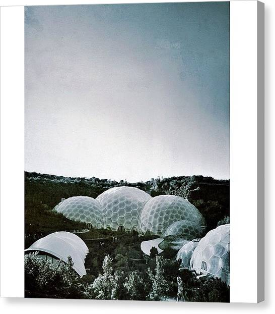 Rainforests Canvas Print - Probably My Last Eden Project Photo by Phil Martin
