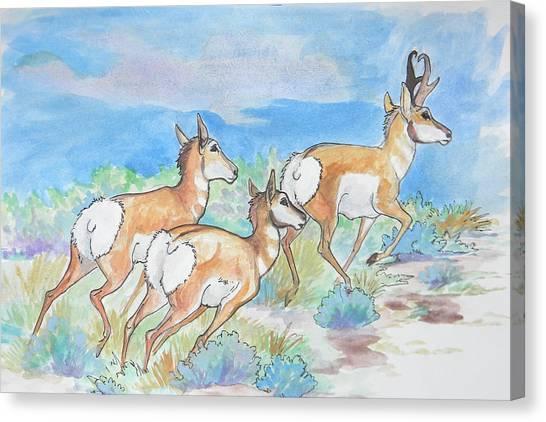 Prongs Canvas Print