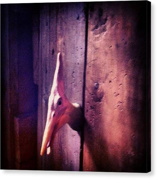 Pterodactyls Canvas Print - #pterodactyl #ink361 #hook #filtermania by H Mackenzie