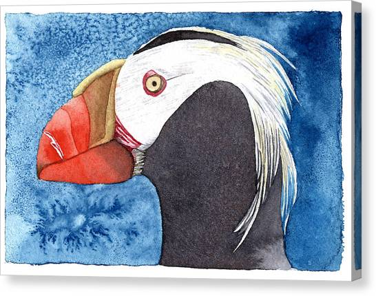 Puffin Canvas Print by Eunice Olson