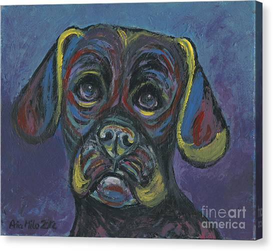 Puggle In Abstract Canvas Print
