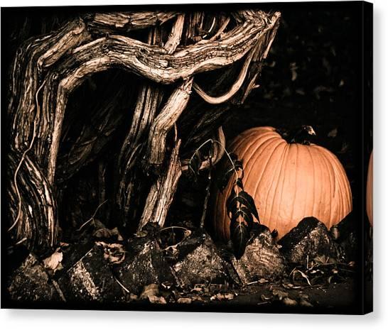 Canvas Print featuring the photograph Albuquerque, New Mexico - Pumpkin by Mark Forte