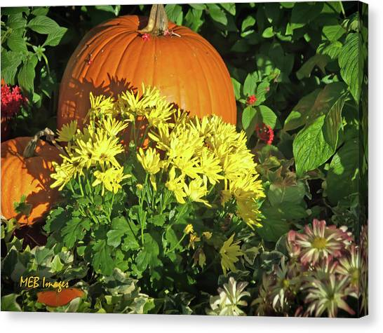 Pumpkins And Mums Canvas Print