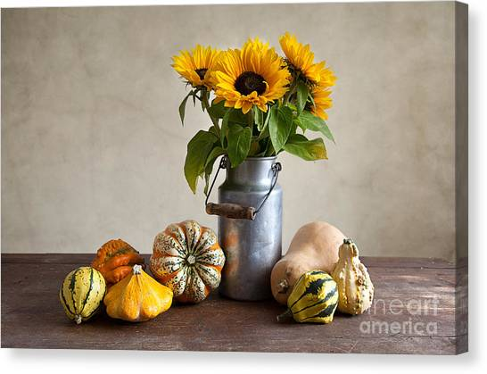 Pumpkins Canvas Print - Pumpkins And Sunflowers by Nailia Schwarz