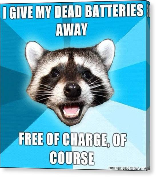 Raccoons Canvas Print - #pun #raccoon #batteries #charge by Jared Colbert